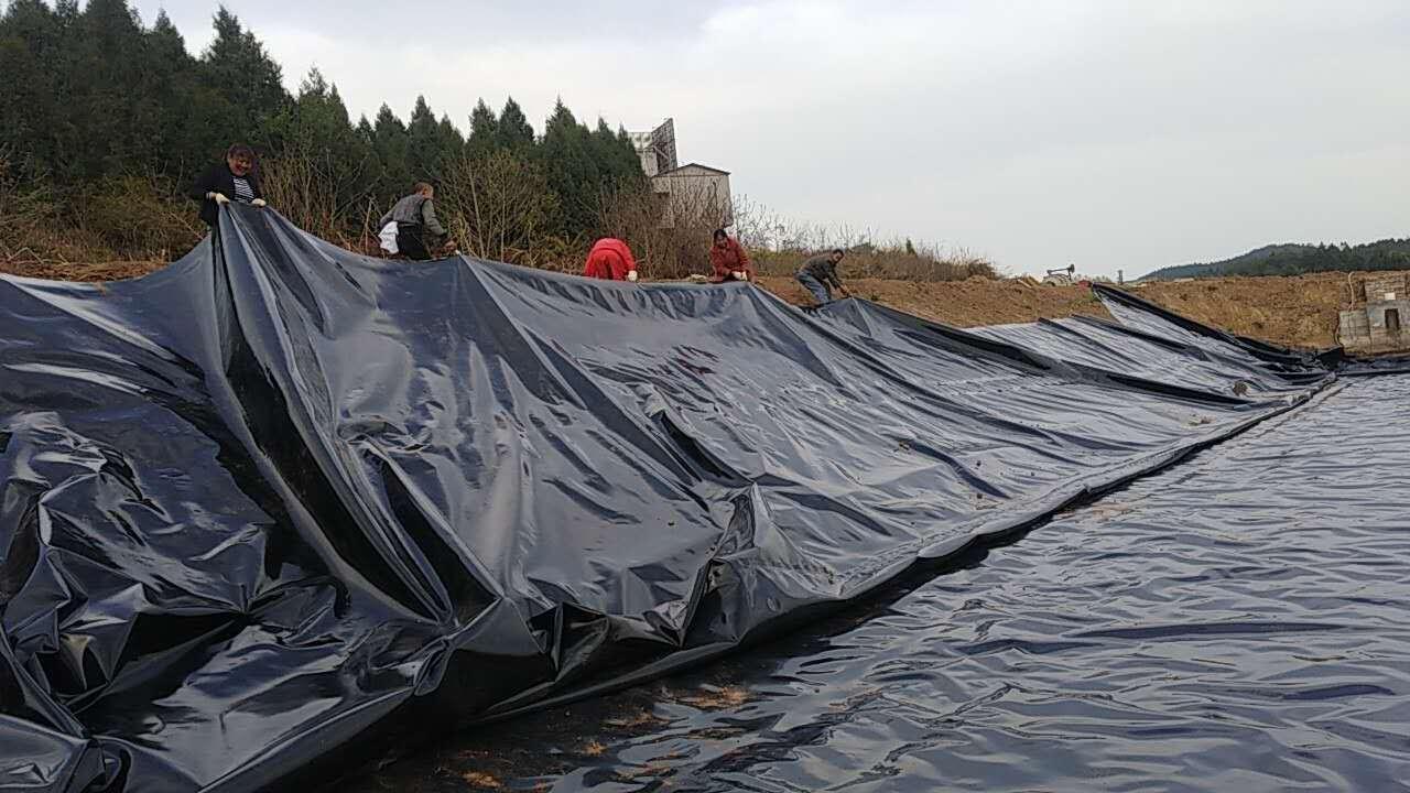 使用这个方法创造财富 利用防渗膜修建高产鱼塘