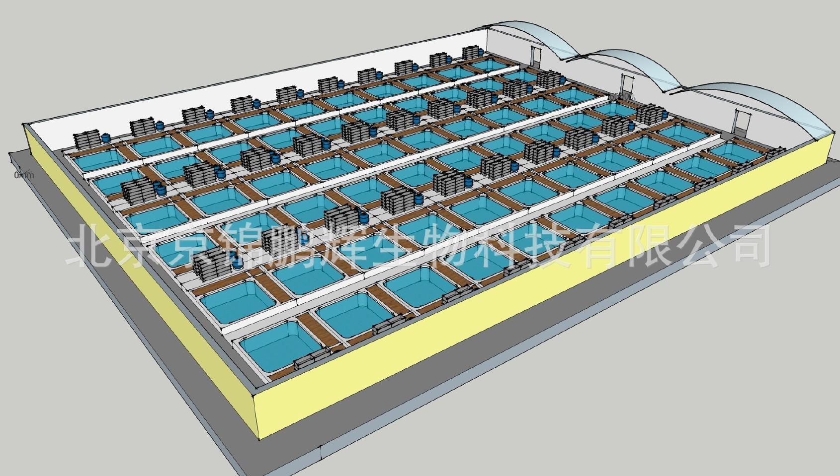天津北京整体鱼池锦鲤景区世界v整体建造别墅我庭院豪华别墅的种子图片
