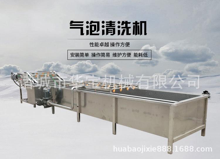 供应莲雾全自动清洗机 厂家直销质量可靠示例图1