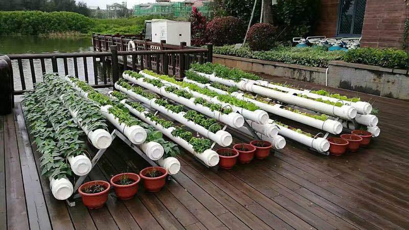 阳台菜园无土栽培 阳台种菜设施设备 a字长槽式种植机图片
