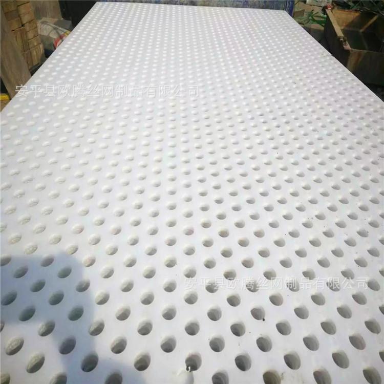 廢氣排放設備用塑料板沖孔網 25mm孔圓孔塑料板 pp孔板