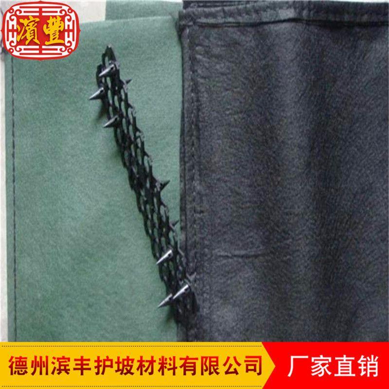 滨丰护坡 生态袋厂家直销护坡生态袋、绿色生态袋、植生袋、植草毯、植被垫示例图6