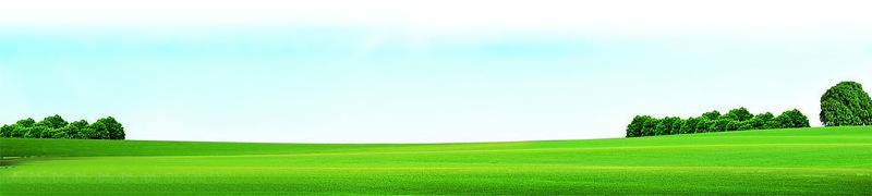 多层加强筋植被垫 滨丰护坡 植草毯环保护坡植被垫示例图18