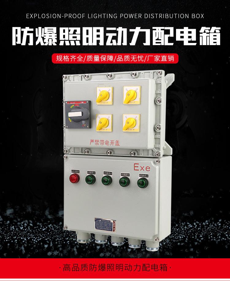 隆业供应-不锈钢防爆接线箱304不锈钢BXM(D)52防爆配电箱示例图2