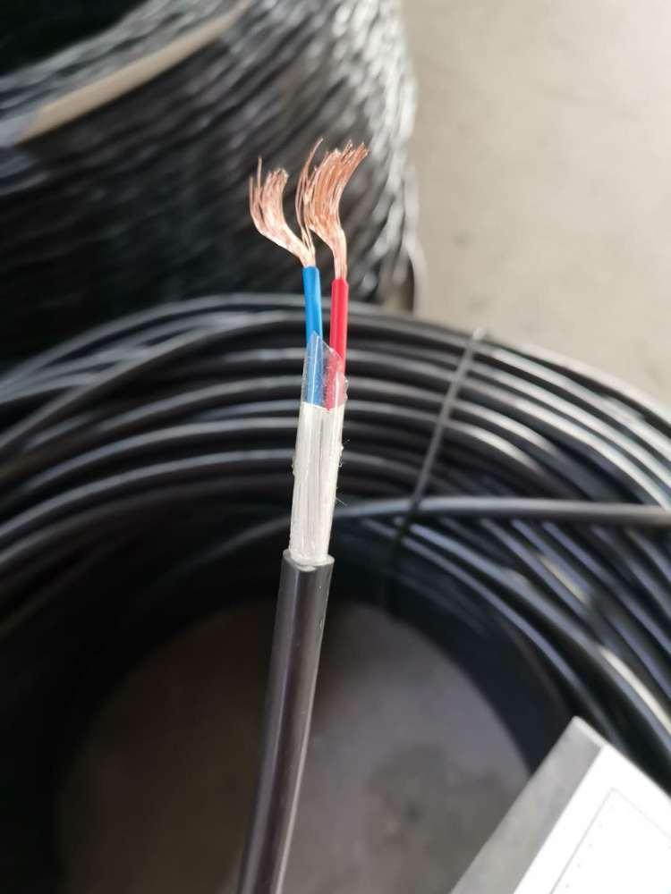 阻燃计算机电缆ZR-DJYPVRP电缆示例图3