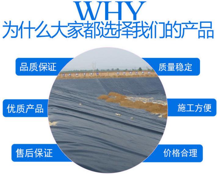实力厂家热卖水利堤坝、交通隧洞、筑路、机场专用hdpe复合<a href=