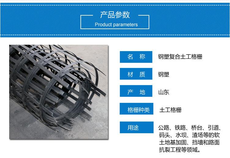 钢塑复合土工格栅 新型熔焊工艺焊接钢塑复合土工格栅 土工格栅厂家示例图1