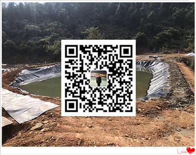 湖南湘潭黑膜沼气池施工  沼气池设计  沼气池安装公司示例图6