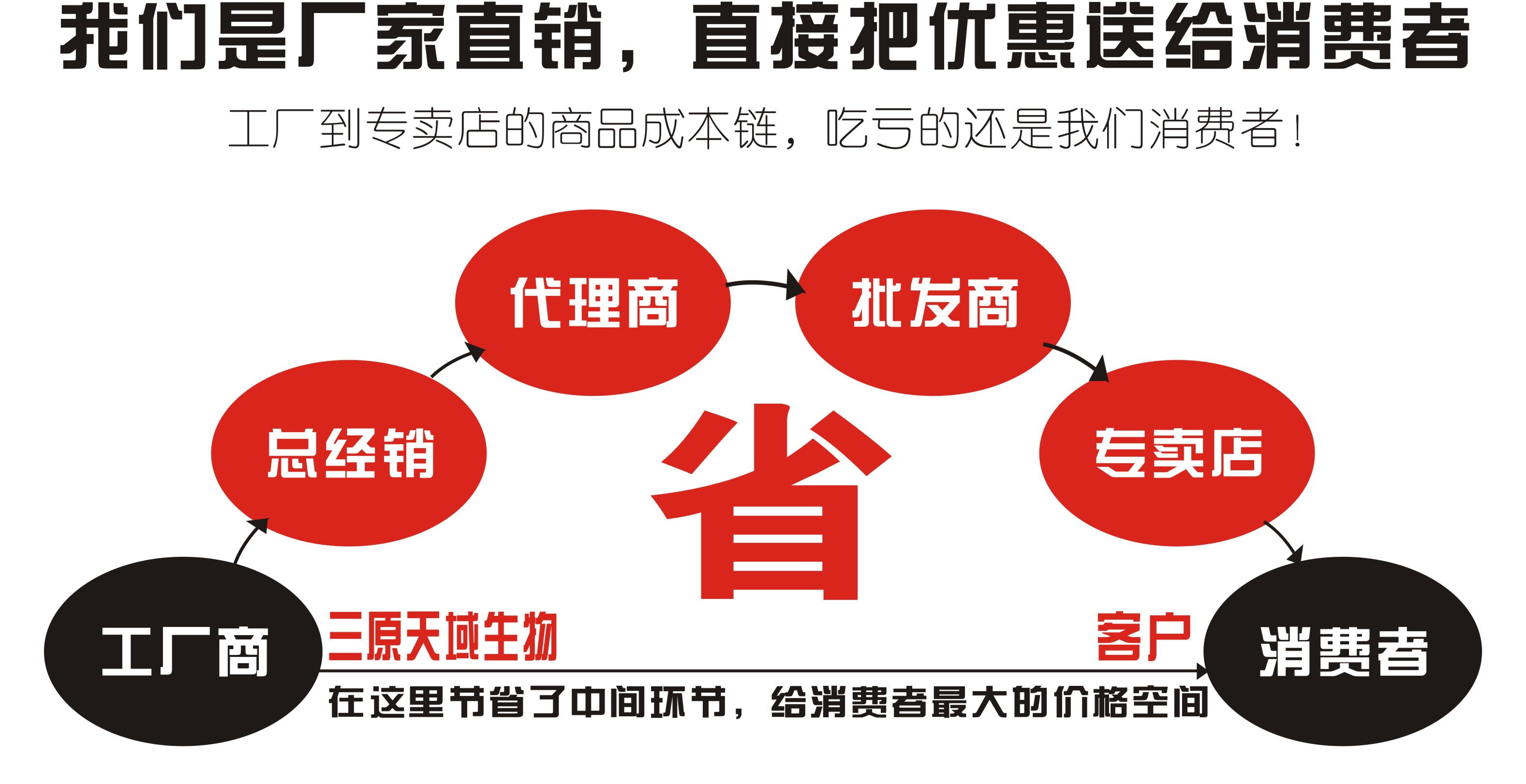 廠家供應小白菊提取物 小白菊內酯示例圖2