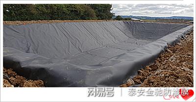 辽宁垃圾填埋场用高密度聚乙烯HDPE2.0mm土工膜价格示例图2