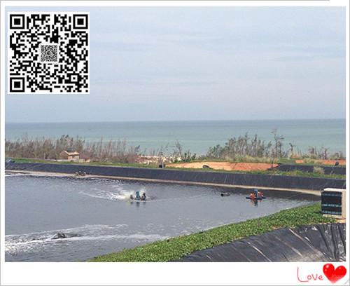 欢迎进入江西鹰潭黑膜沼气池建设hdpe防渗土工膜生产厂家直销电话示例图6