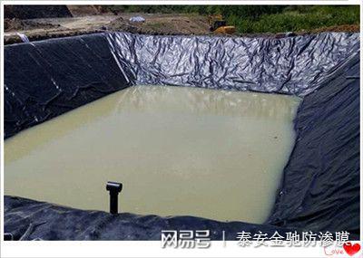 陕西宝鸡垃圾填埋场用高密度聚乙烯HDPE0.75mm土工膜价格示例图4