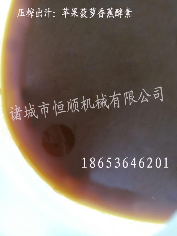 发酵中药原液提取压榨机 中药酵素过滤杂质压滤机 药泥固液分离机示例图107