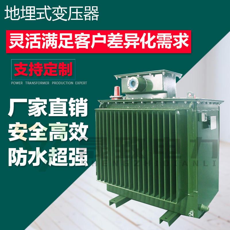 地埋式变压器s11-mrd-250kva 地埋式变压器生产厂家 地下式变压器示例图1