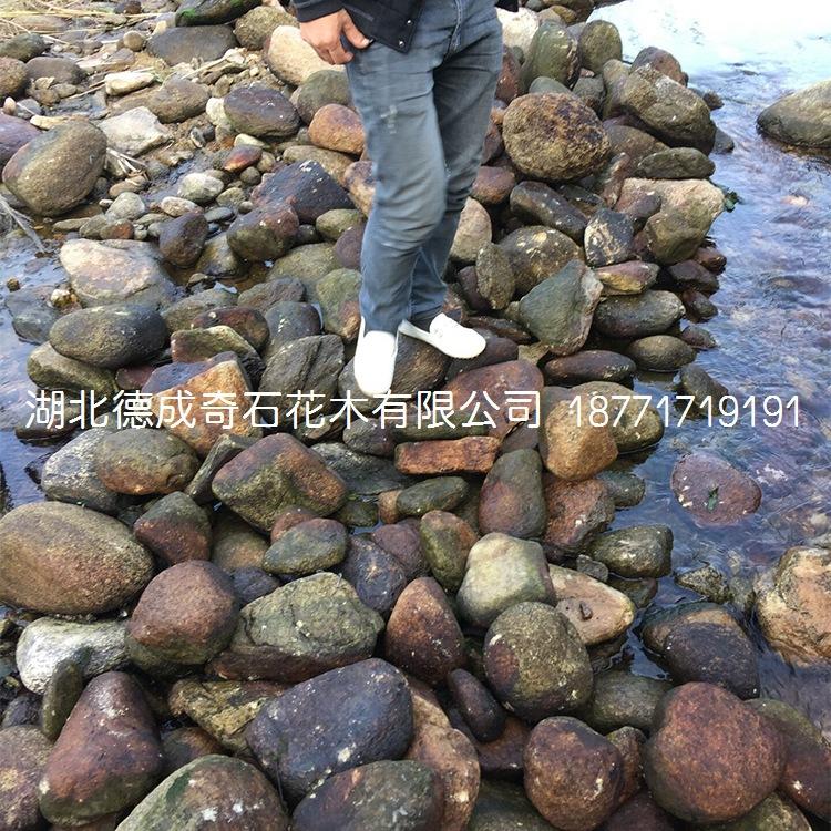 鹅卵石批发鹅卵石价格鹅卵石示例图8