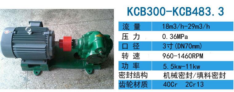 KCB-55齿轮泵整机附送机械密封一套示例图4