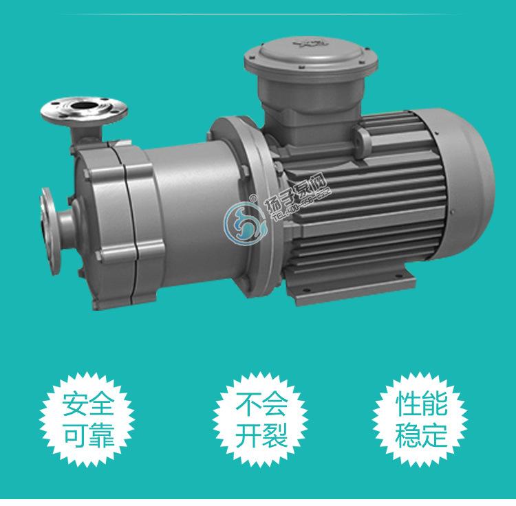 32CQ-15不锈钢磁力驱动化工泵金属磁力泵防腐防爆磁力泵 厂家直销示例图4