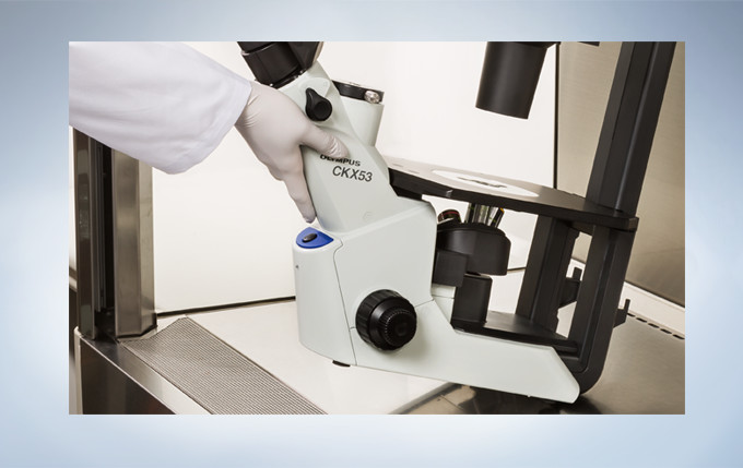 奥林巴斯倒置显微镜CKX53示例图8