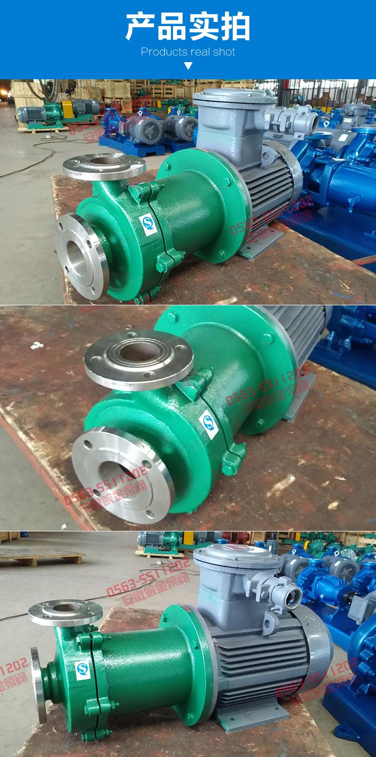 CQB磁力離心泵 不銹鋼磁力泵品牌 化工磁力驅動泵 304.316L磁力管道泵生產示例圖10