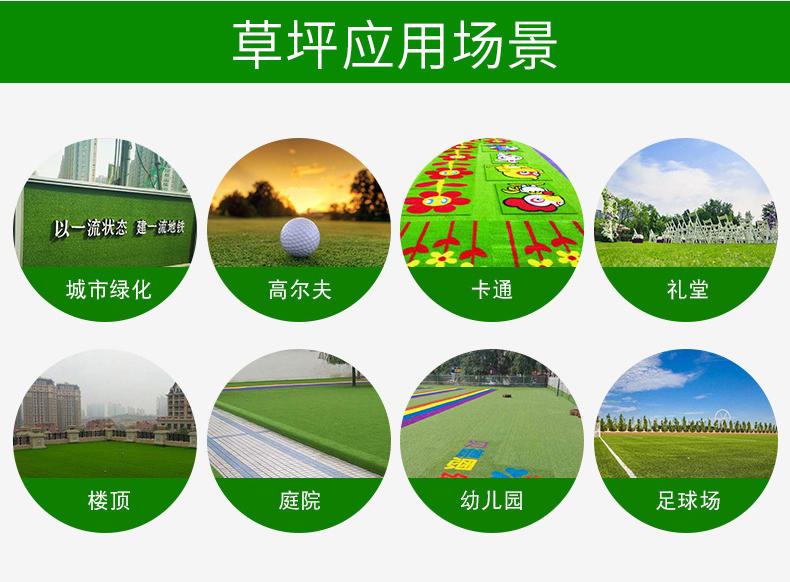 门球场人造草皮 人造草皮厂家 人造草皮操场 人造草皮地面示例图1