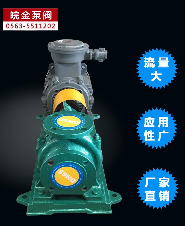 皖金大流量清水泵,清水泵規格型號,is臥式水泵,防腐管道泵,鑄鐵泵型號示例圖6