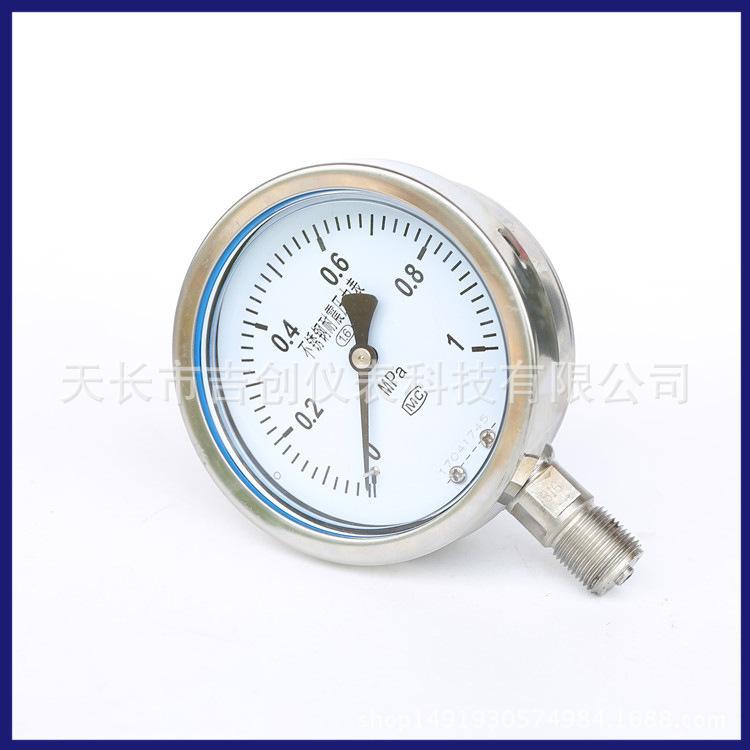 耐震压力表 YN100B 不锈钢充油压力表 气压表耐震压力仪表 压力表 304 316示例图5