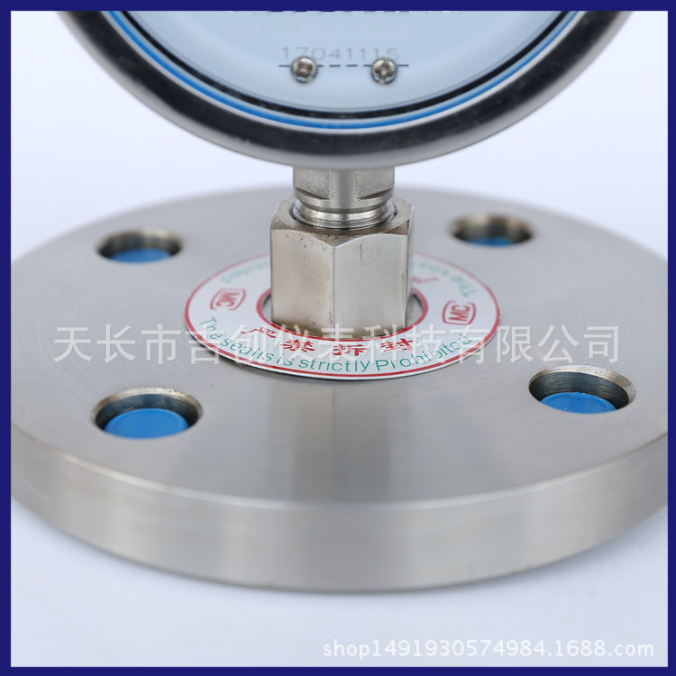 厂家直销不锈钢耐震隔膜压力表 YN-100/MF/DN50 耐震隔膜压力表示例图4