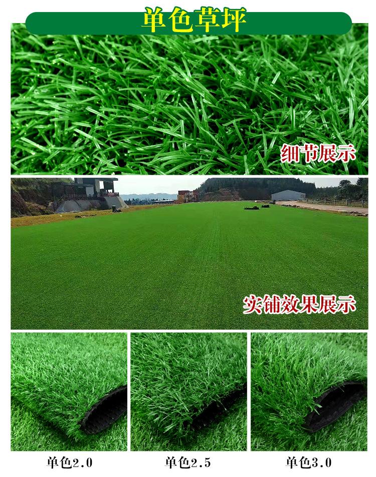 仿真草坪人造草 假草坪地毯 幼儿园彩色草皮人工塑料假草绿色户外示例图13