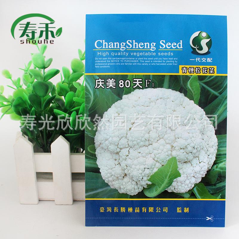 台湾长生梅清80天绿茎松花种子松花菜种子1号
