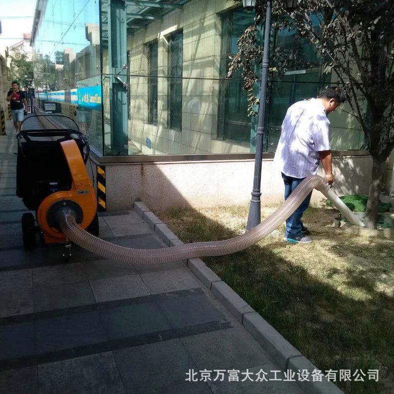 电动过滤吸叶机 落叶清扫设备公园道路吸叶机不扬尘 吸叶机批发示例图4