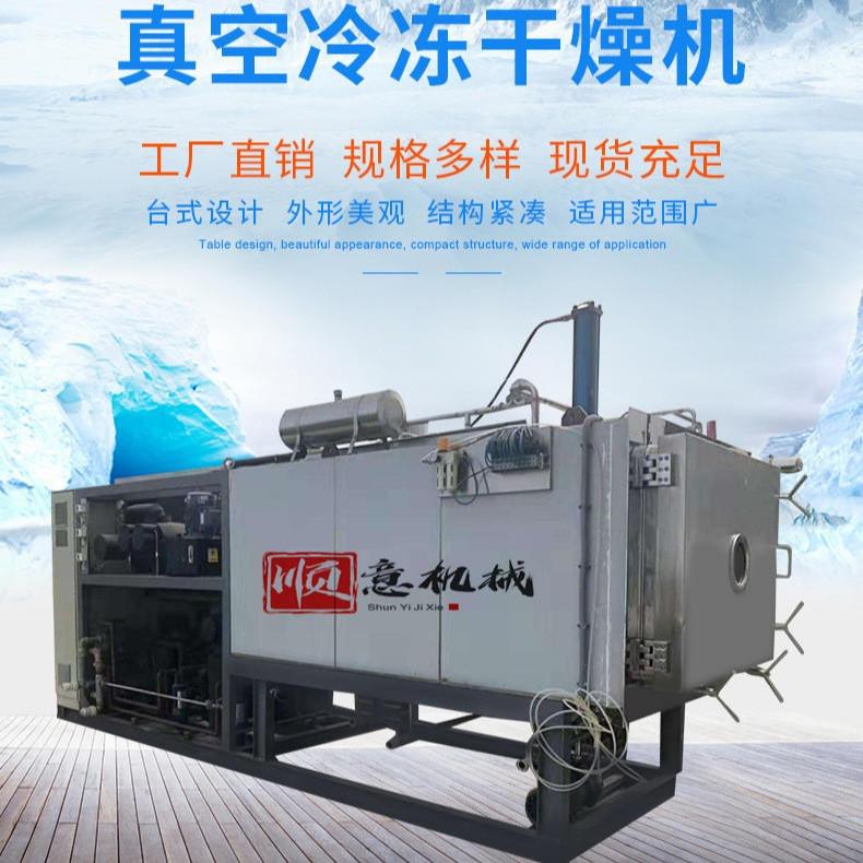 順意 菠蘿蜜凍干機 楊梅真空凍干設備 桑葚真空冷凍干燥機 廠家質量有保障