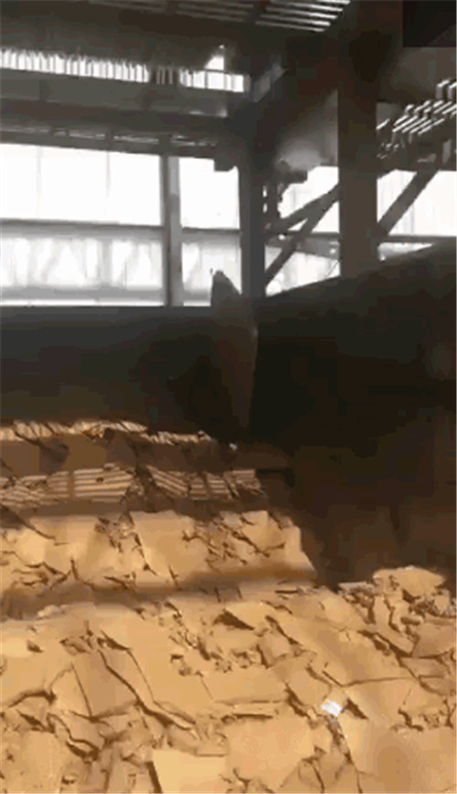 上海建筑工地钻孔灌注桩泥浆处理都用压滤机示例图4