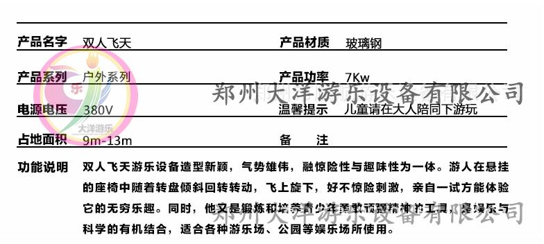 双人飞天新款儿童游乐设备 销售火爆 双人飞天大洋游乐生产厂家示例图14