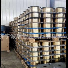 供應鍍銅鋼絲 橡塑制品膠管鋼絲專用多種直徑鍍銅鋼絲