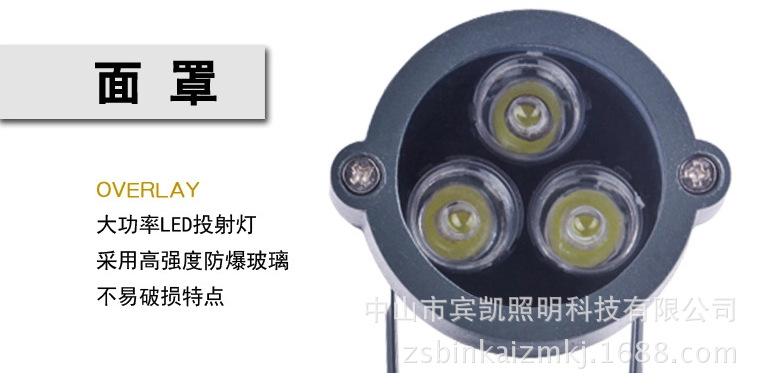 LED投射灯3w6w户外防水地插灯 草坪投射灯圆形插地灯花园射树灯示例图10