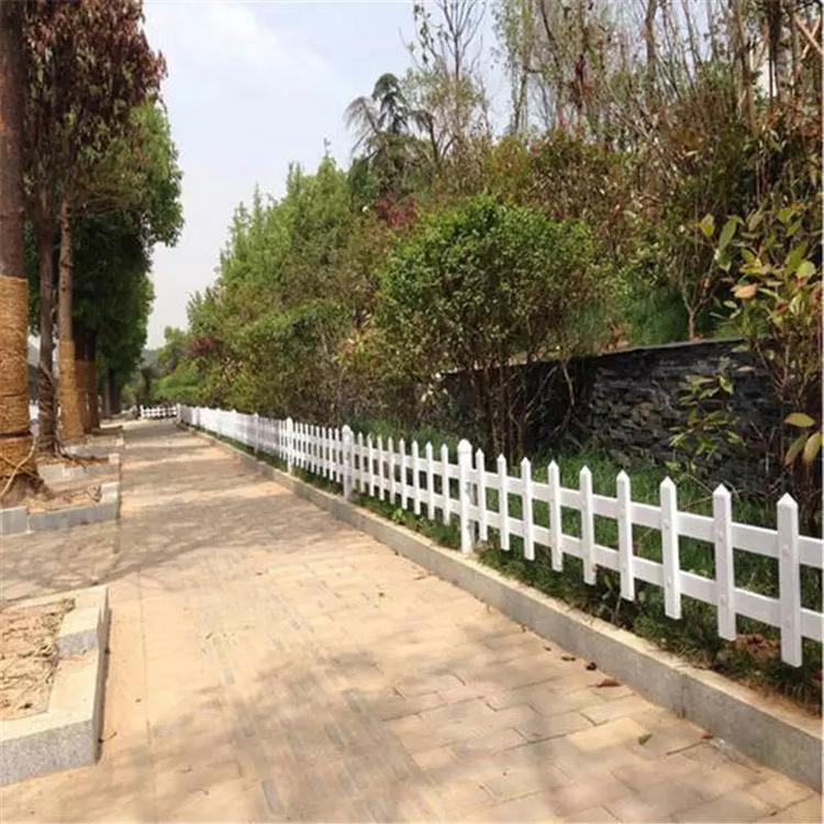 塑料围栏 草坪围挡 美丽乡村建设护栏 云旭 现货销售