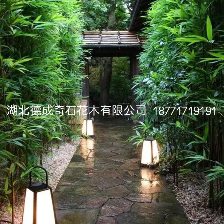2018年汀步石景墙石批发庭院铺路石示例图6