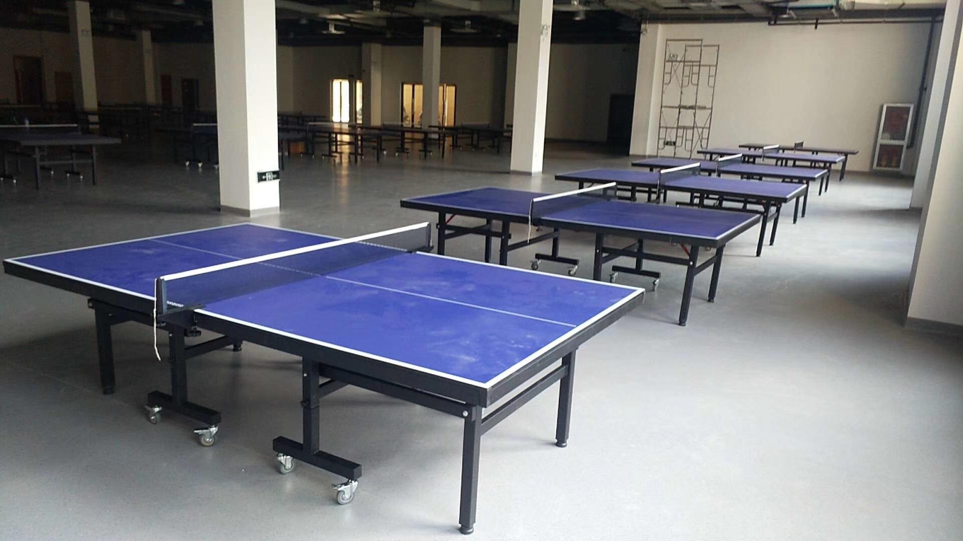 特价供应室内可移动乒乓球桌 家用标准乒乓球台 物美价廉售后无忧示例图13