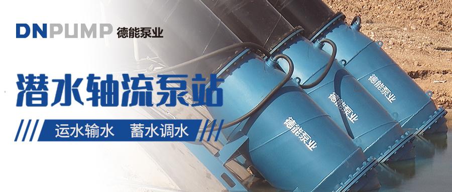高壓潛水泵 大功率潛水軸流泵 德能潛水軸流泵廠家示例圖1