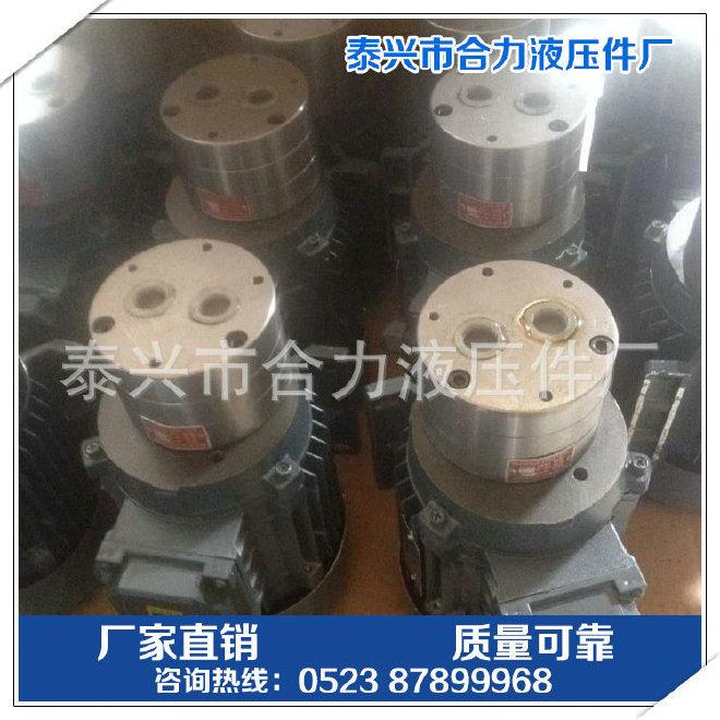 专业生产 不锈钢齿轮泵 不锈钢齿轮 CB-B不锈钢齿轮泵