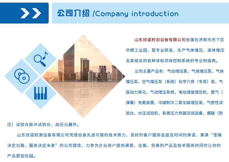 山东欣诺厂家销售工业气体增压泵 耐用保压好 小型气驱气体增压泵示例图17