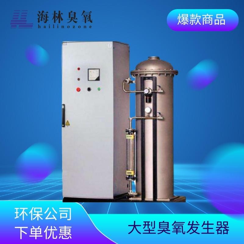 济南海林 大型臭氧发生器 臭氧消毒机价格 臭氧机 厂家直销
