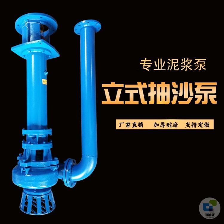田加正厂家直销 洗沙厂合金耐磨污水泵 洗沙泵 洗沙泥浆泵 污水罐立式提升泵  立式抽沙泵