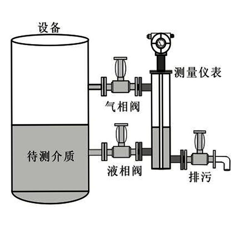 TR-800GF系列智能高压浮筒液位计 高温高压液位计示例图2