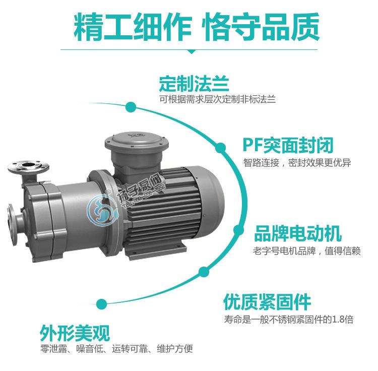 扬子CQ普通型304不锈钢磁力泵 316防腐蚀磁力泵 无泄漏磁力驱动泵示例图9
