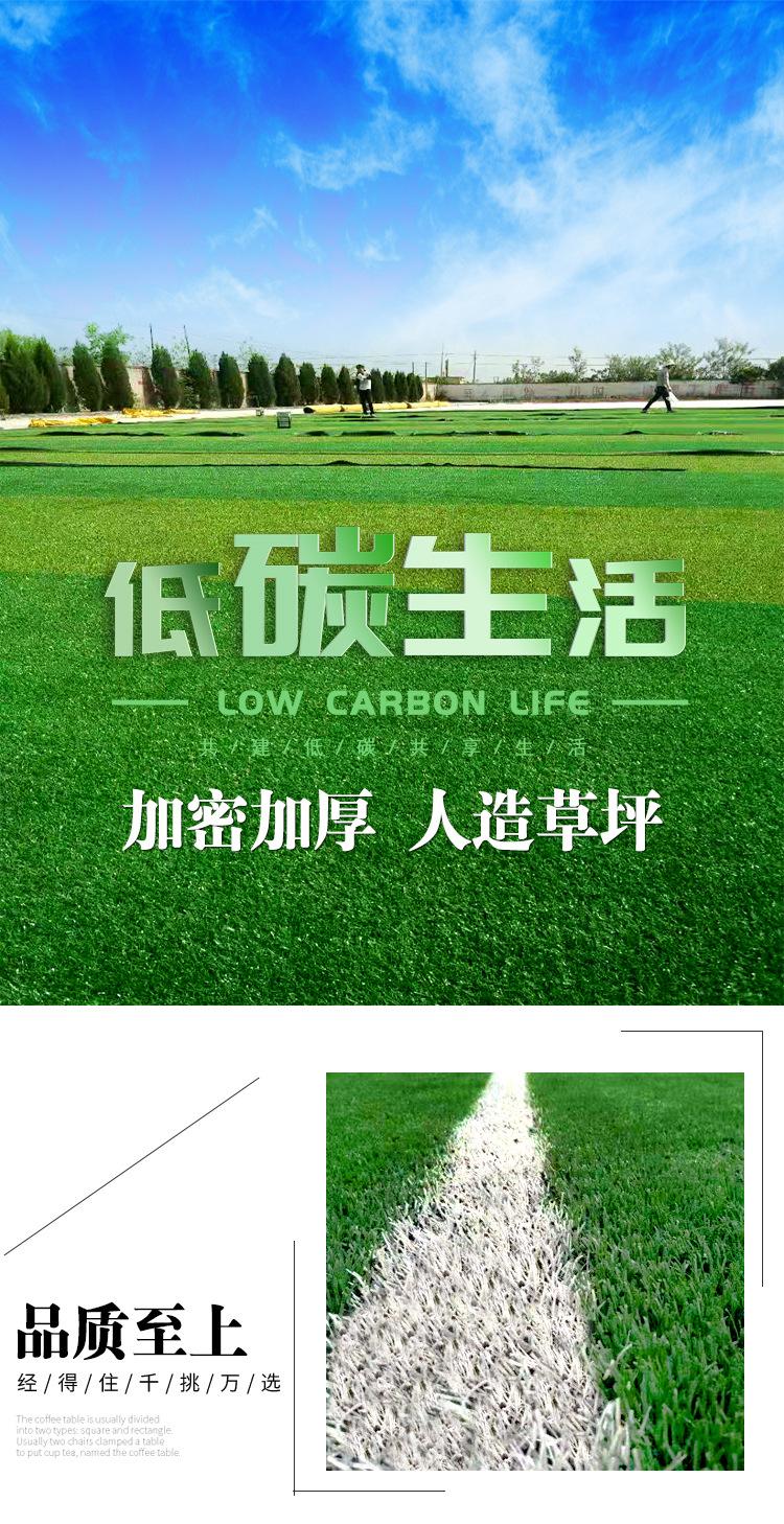 仿真草坪人造草 假草坪地毯 幼兒園彩色草皮人工塑料假草綠色戶外示例圖1