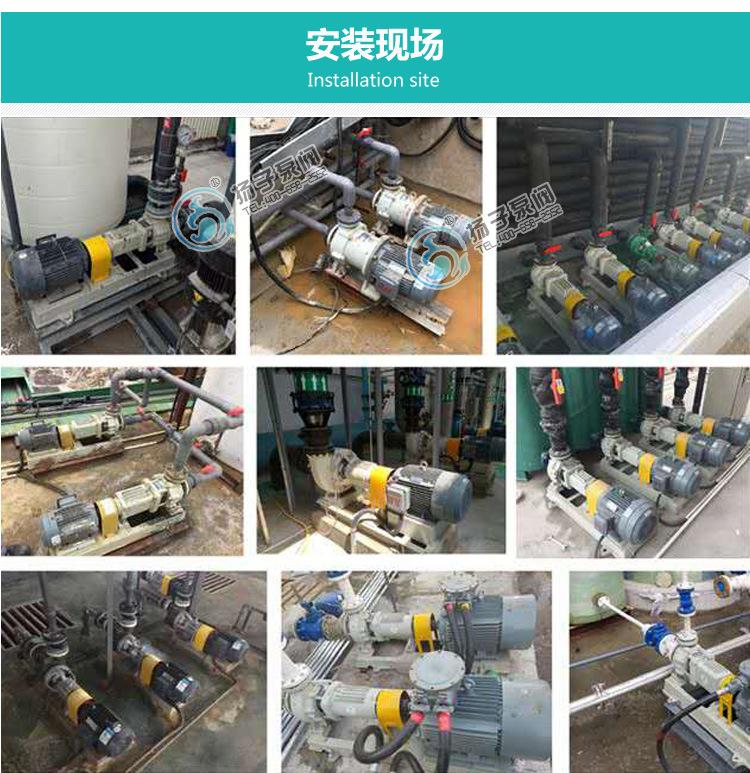 40CQ-20 不锈钢磁力泵生产厂家 不锈钢磁力泵选型及报价 304/316示例图14