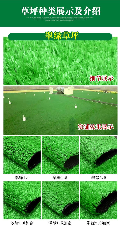 仿真草坪人造草 假草坪地毯 幼儿园彩色草皮人工塑料假草绿色户外示例图11