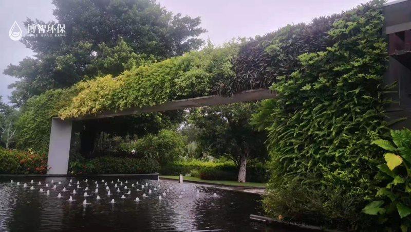 模块式种植盒 垂直绿化 立体绿化 生态植物墙,智能植物墙,植物墙种植盒,博智环保示例图4