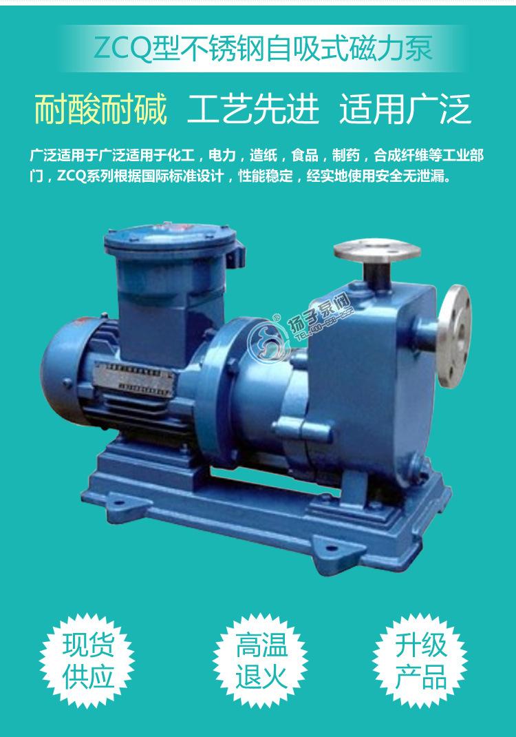无泄漏防爆自吸泵制造商 ZCQ65-50-145自吸式不锈钢耐腐蚀磁力泵示例图3